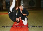karate-stile-ryu
